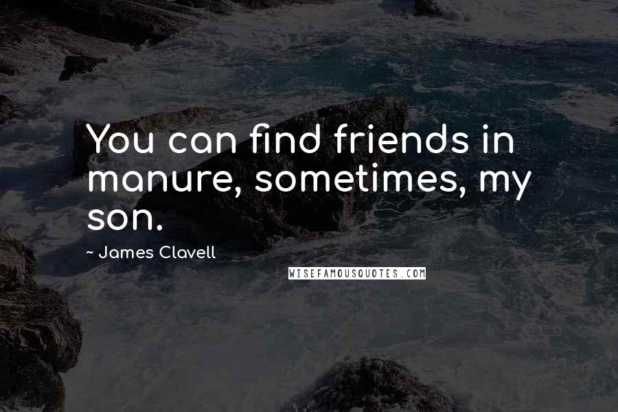 James Clavell quotes: You can find friends in manure, sometimes, my son.
