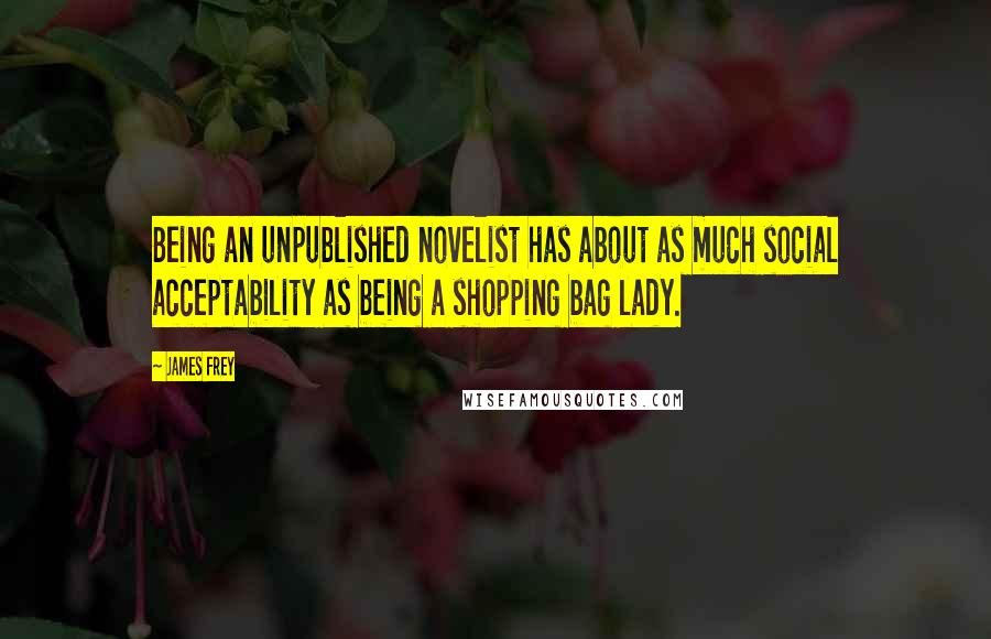 James Frey quotes: Being an unpublished novelist has about as much social acceptability as being a shopping bag lady.