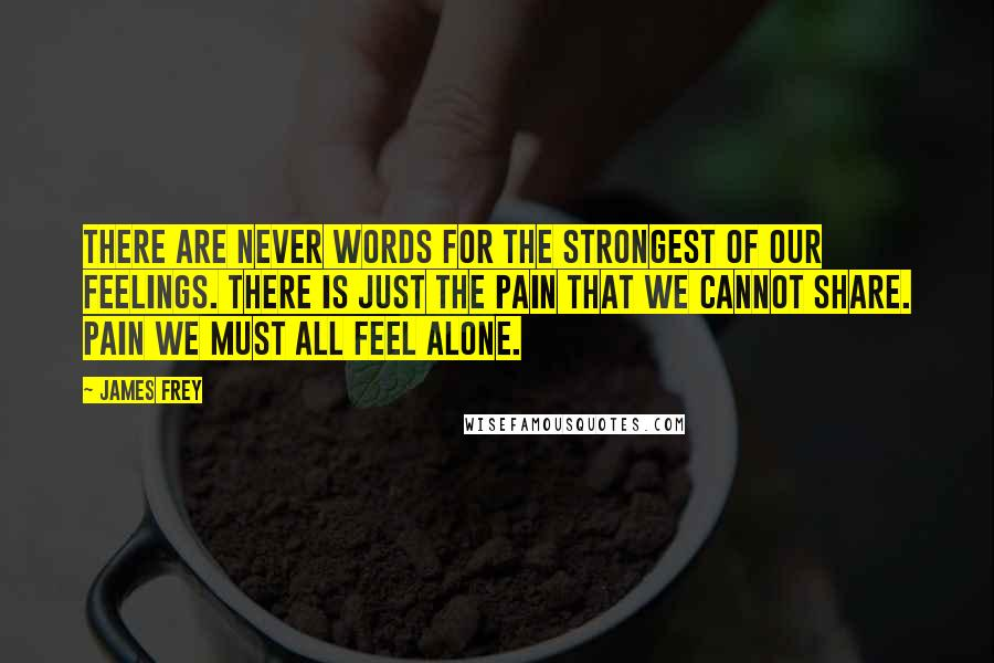James Frey quotes: There are never words for the strongest of our feelings. There is just the pain that we cannot share. Pain we must all feel alone.