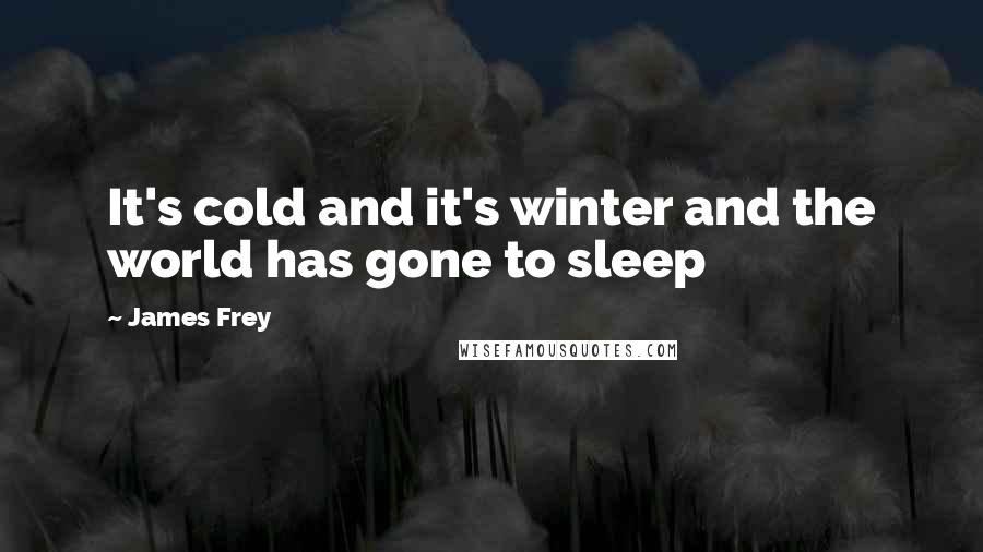 James Frey quotes: It's cold and it's winter and the world has gone to sleep