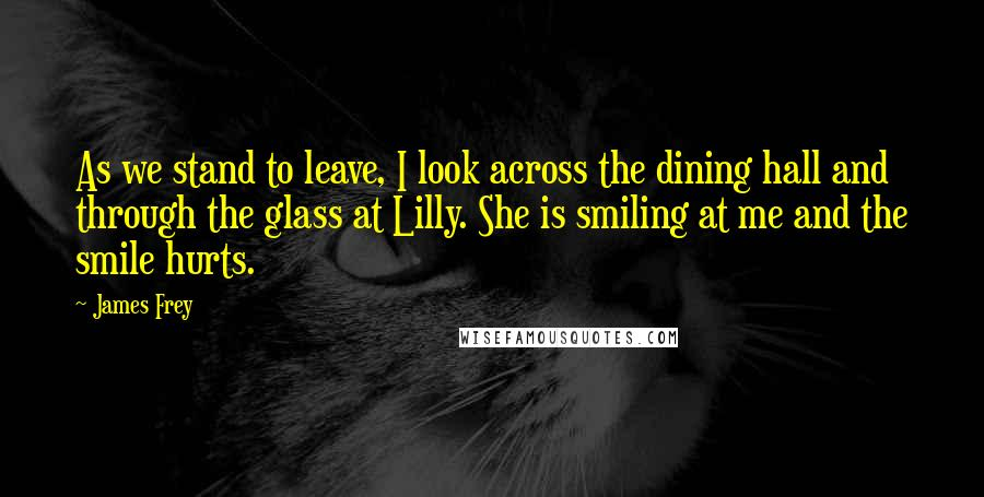 James Frey quotes: As we stand to leave, I look across the dining hall and through the glass at Lilly. She is smiling at me and the smile hurts.