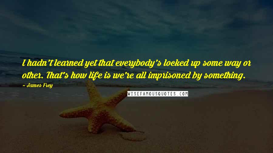 James Frey quotes: I hadn't learned yet that everybody's locked up some way or other. That's how life is we're all imprisoned by something.