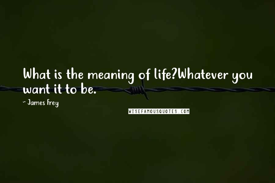 James Frey quotes: What is the meaning of life?Whatever you want it to be.