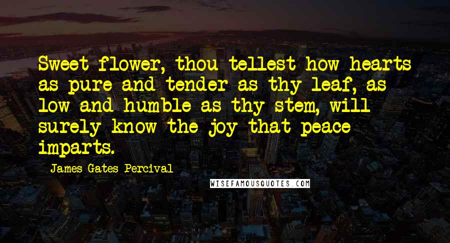 James Gates Percival quotes: Sweet flower, thou tellest how hearts as pure and tender as thy leaf, as low and humble as thy stem, will surely know the joy that peace imparts.