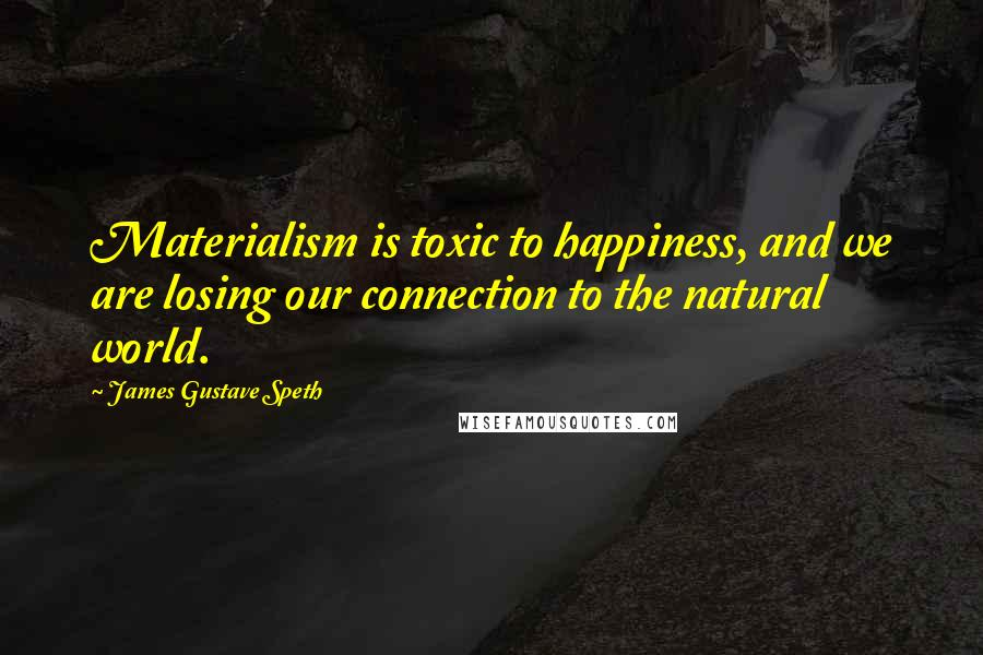 James Gustave Speth quotes: Materialism is toxic to happiness, and we are losing our connection to the natural world.