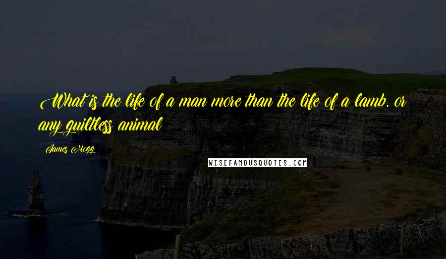 James Hogg quotes: What is the life of a man more than the life of a lamb, or any guiltless animal?