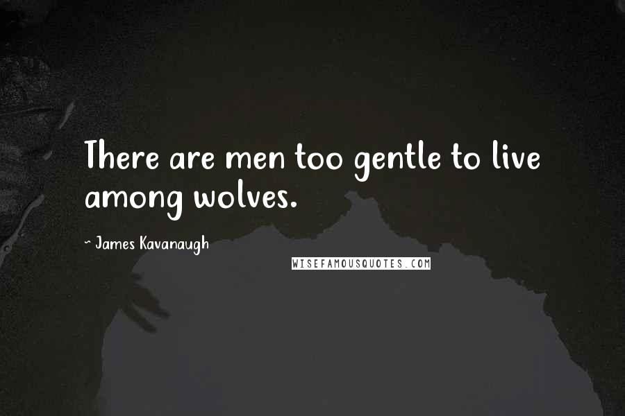 James Kavanaugh quotes: There are men too gentle to live among wolves.