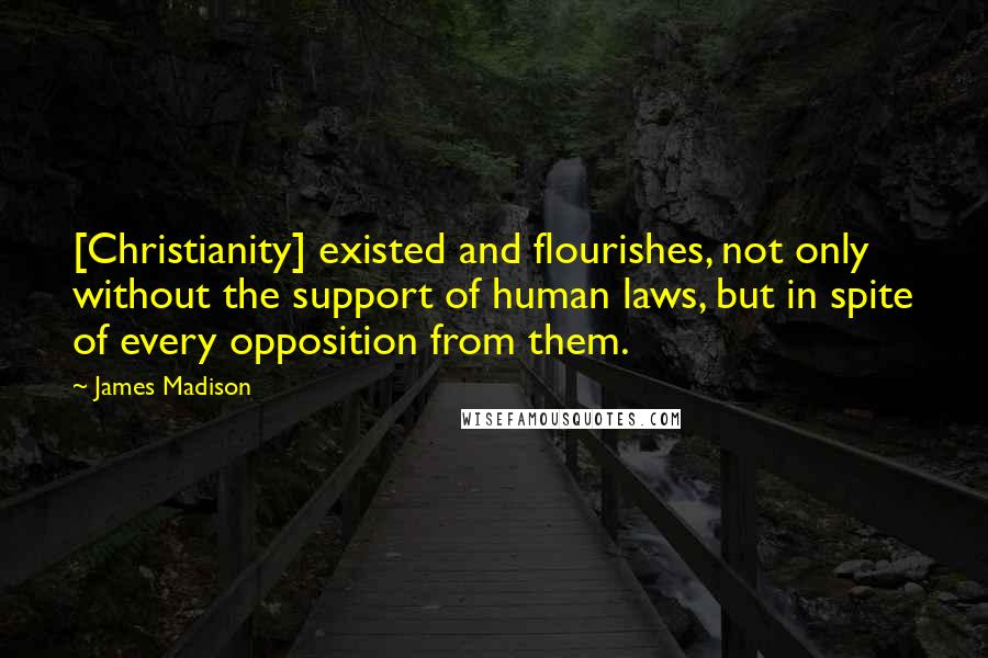 James Madison quotes: [Christianity] existed and flourishes, not only without the support of human laws, but in spite of every opposition from them.