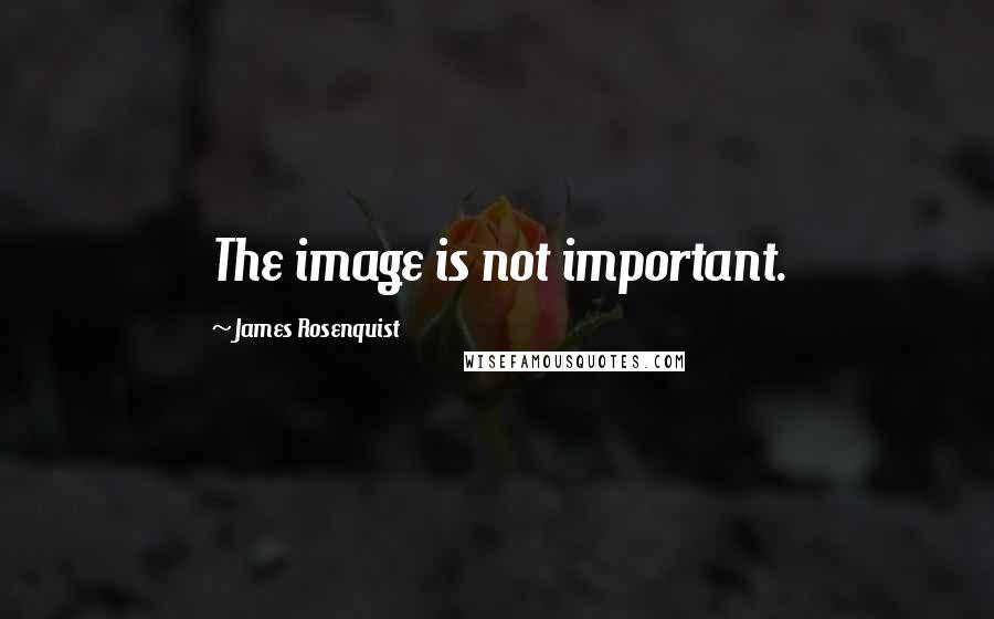 James Rosenquist quotes: The image is not important.
