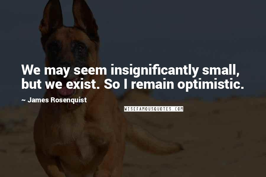 James Rosenquist quotes: We may seem insignificantly small, but we exist. So I remain optimistic.
