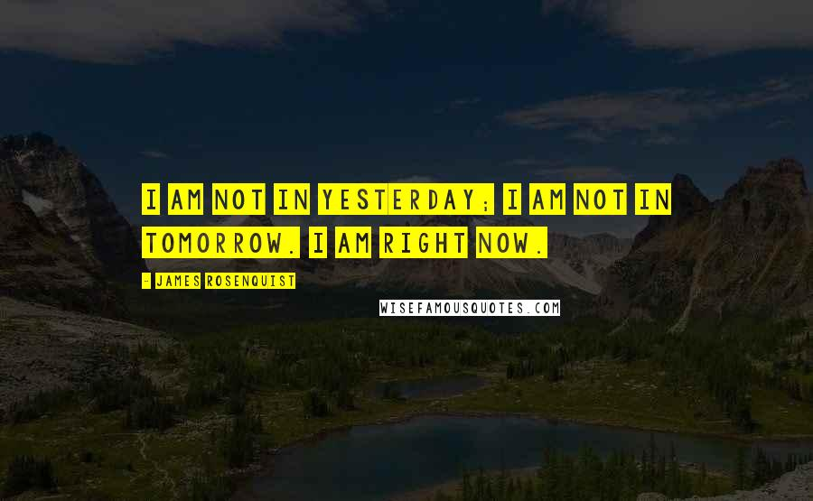 James Rosenquist quotes: I am not in yesterday; I am not in tomorrow. I am right now.
