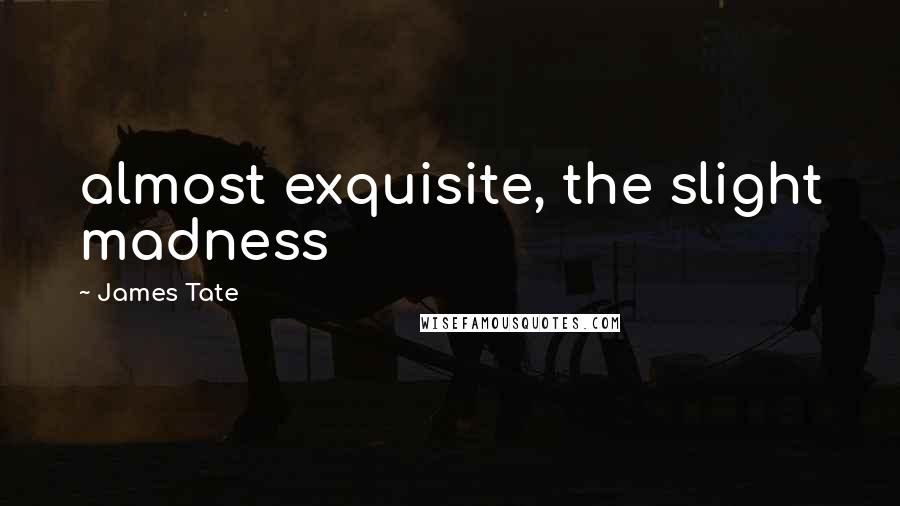 James Tate quotes: almost exquisite, the slight madness