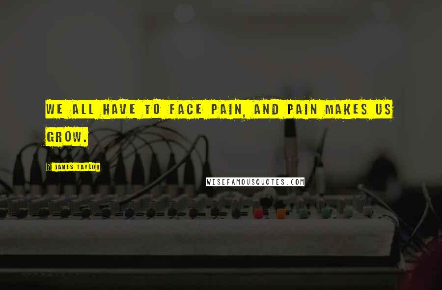 James Taylor quotes: We all have to face pain, and pain makes us grow.