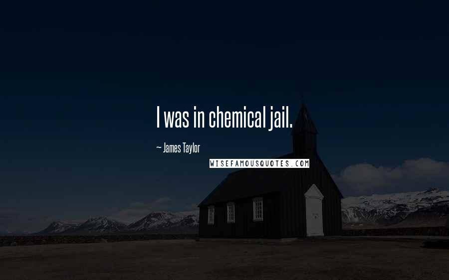 James Taylor quotes: I was in chemical jail.