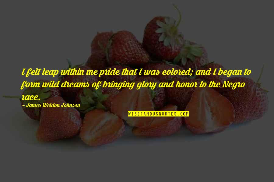 James Weldon Quotes By James Weldon Johnson: I felt leap within me pride that I