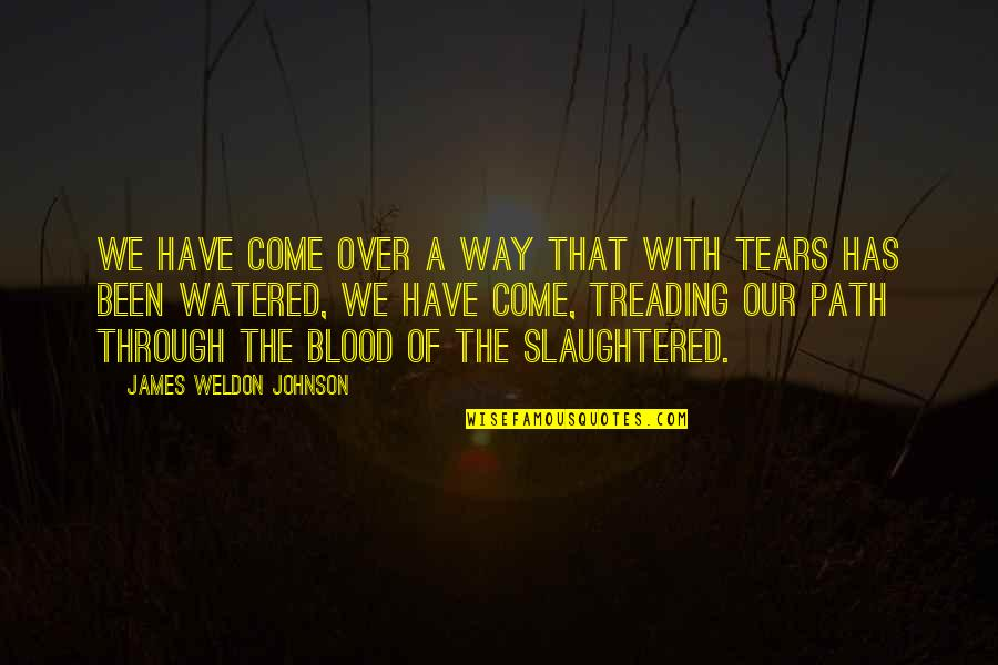 James Weldon Quotes By James Weldon Johnson: We have come over a way that with