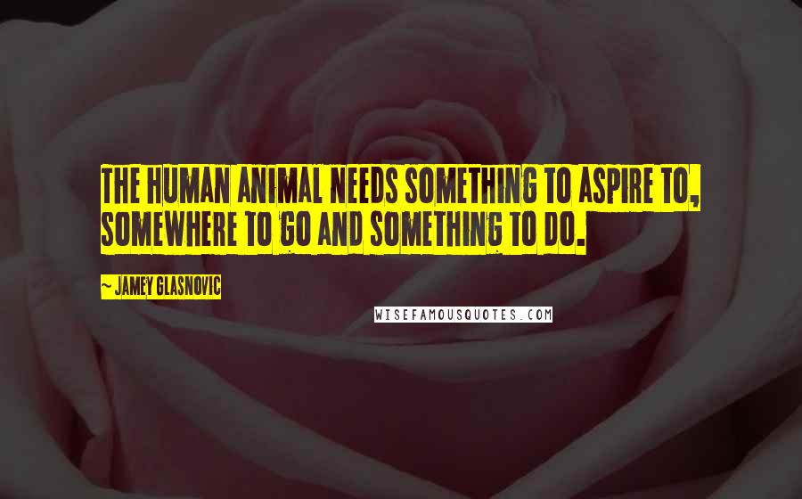Jamey Glasnovic quotes: The human animal needs something to aspire to, somewhere to go and something to do.