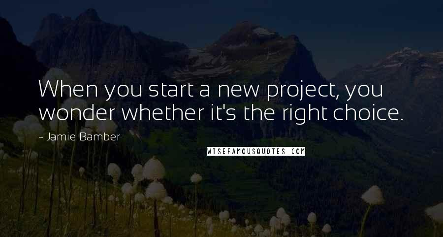 Jamie Bamber quotes: When you start a new project, you wonder whether it's the right choice.