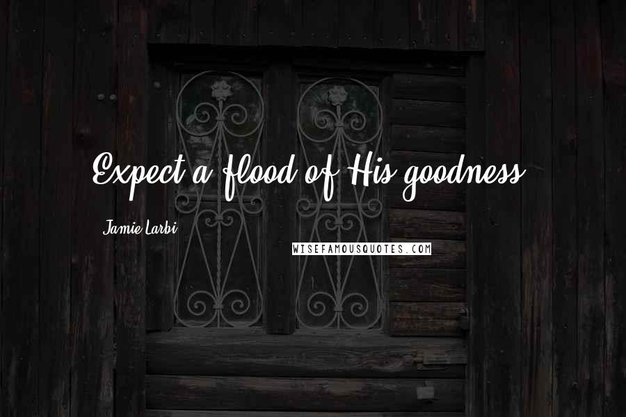 Jamie Larbi quotes: Expect a flood of His goodness!