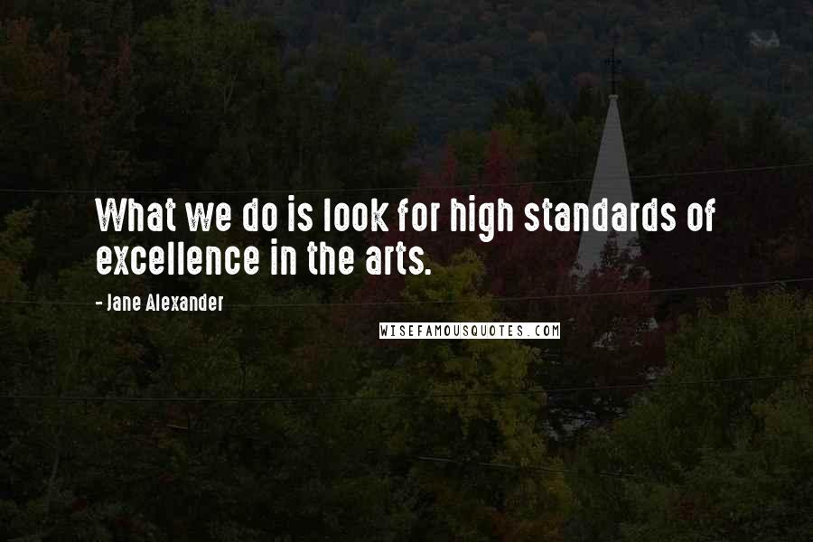 Jane Alexander quotes: What we do is look for high standards of excellence in the arts.