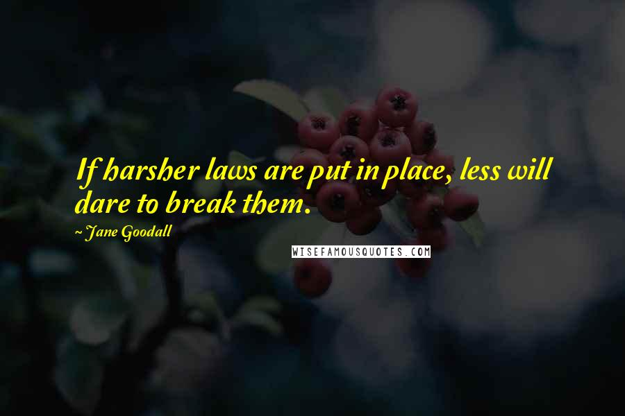 Jane Goodall quotes: If harsher laws are put in place, less will dare to break them.
