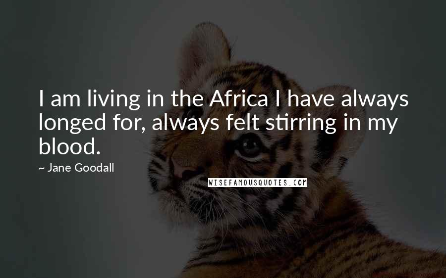 Jane Goodall quotes: I am living in the Africa I have always longed for, always felt stirring in my blood.
