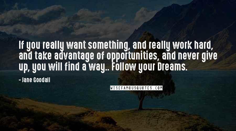 Jane Goodall quotes: If you really want something, and really work hard, and take advantage of opportunities, and never give up, you will find a way.. Follow your Dreams.
