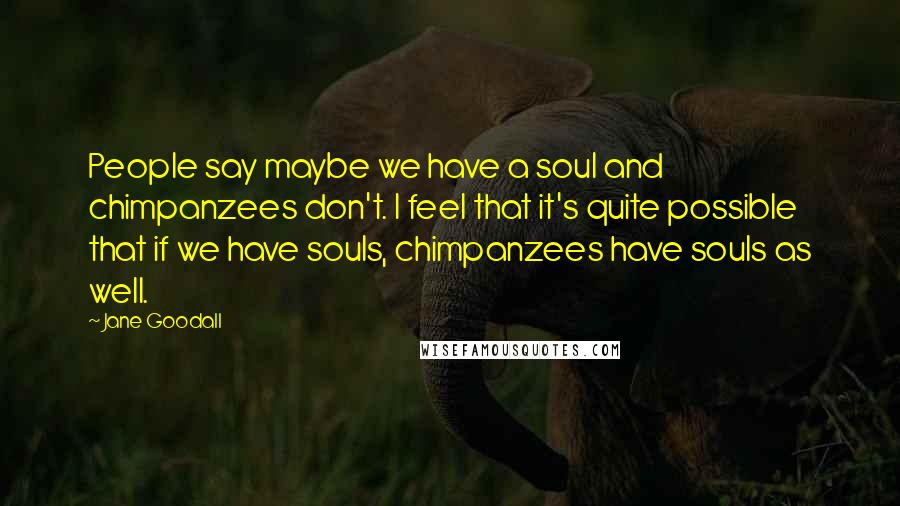 Jane Goodall quotes: People say maybe we have a soul and chimpanzees don't. I feel that it's quite possible that if we have souls, chimpanzees have souls as well.