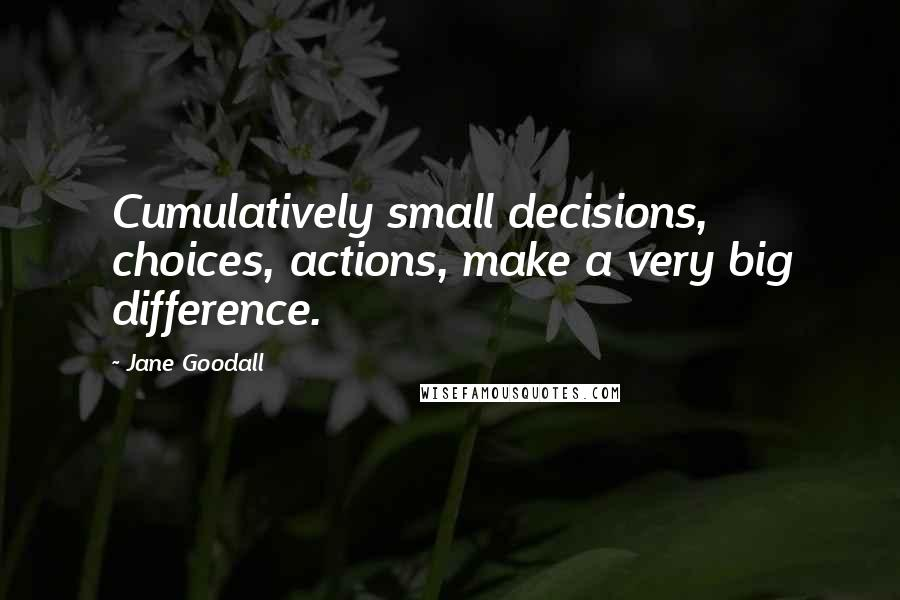 Jane Goodall quotes: Cumulatively small decisions, choices, actions, make a very big difference.