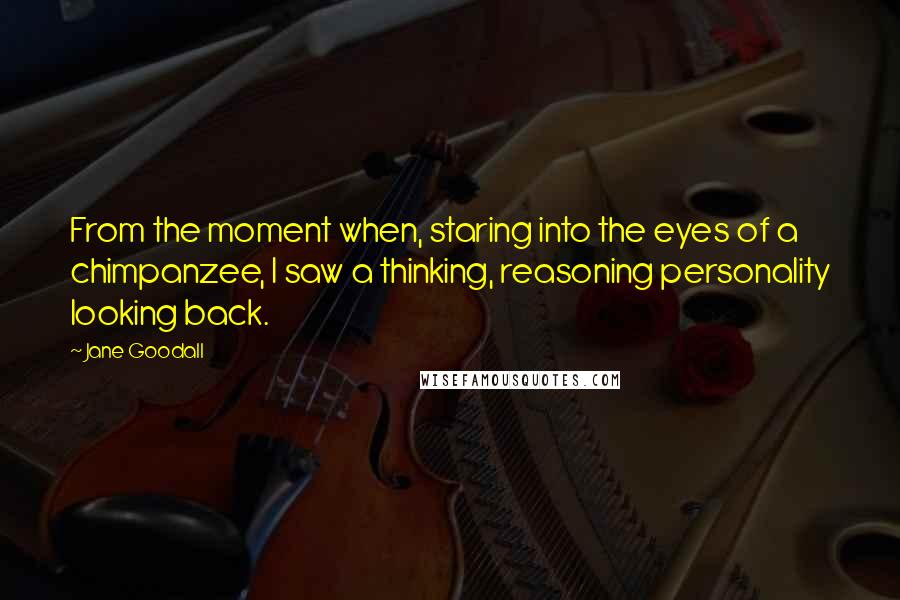 Jane Goodall quotes: From the moment when, staring into the eyes of a chimpanzee, I saw a thinking, reasoning personality looking back.