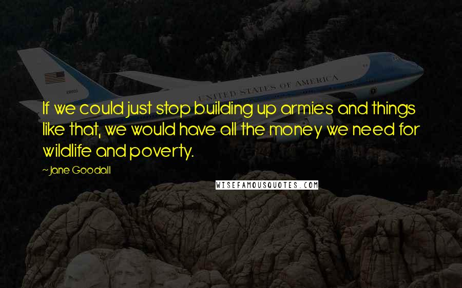 Jane Goodall quotes: If we could just stop building up armies and things like that, we would have all the money we need for wildlife and poverty.