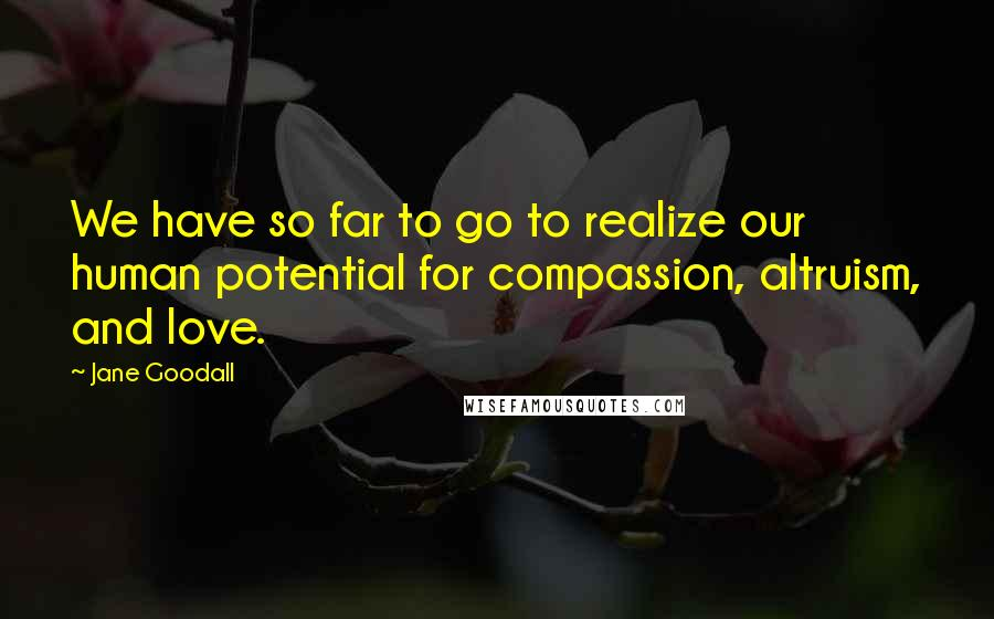 Jane Goodall quotes: We have so far to go to realize our human potential for compassion, altruism, and love.
