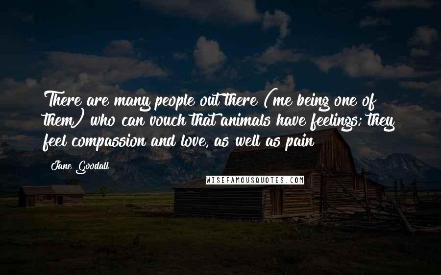 Jane Goodall quotes: There are many people out there (me being one of them) who can vouch that animals have feelings; they feel compassion and love, as well as pain!