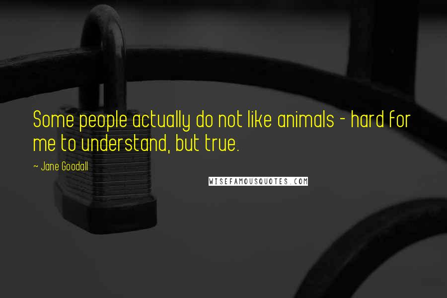 Jane Goodall quotes: Some people actually do not like animals - hard for me to understand, but true.