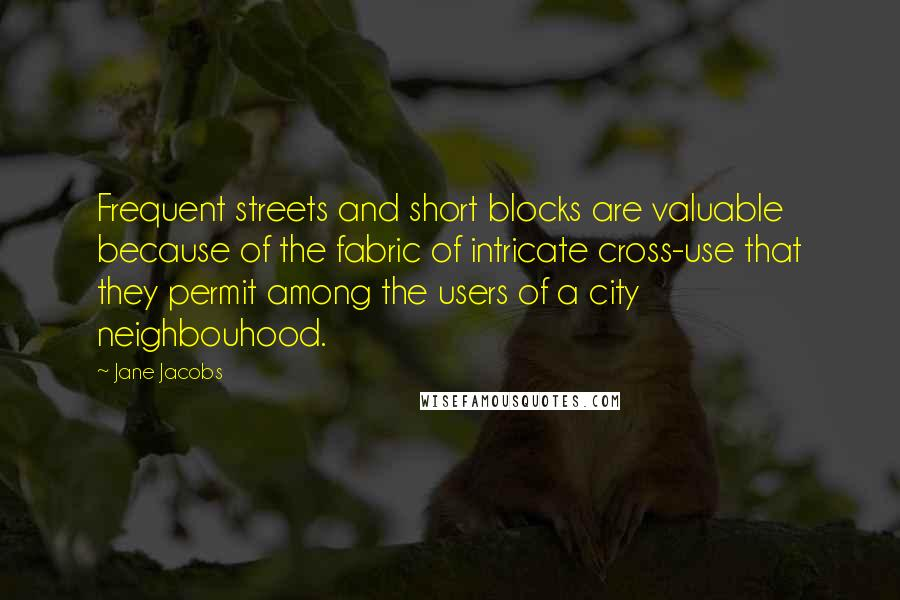 Jane Jacobs quotes: Frequent streets and short blocks are valuable because of the fabric of intricate cross-use that they permit among the users of a city neighbouhood.