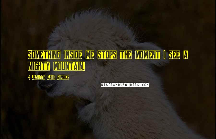 Jasleen Kaur Gumber quotes: Something inside me stops the moment I see a mighty mountain.
