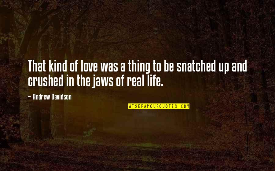 Jaws Quotes By Andrew Davidson: That kind of love was a thing to