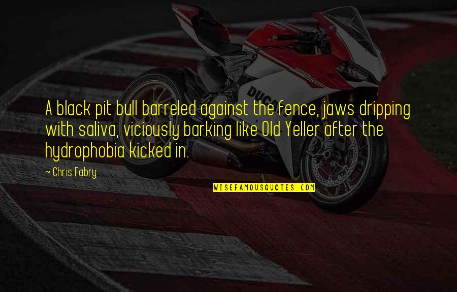 Jaws Quotes By Chris Fabry: A black pit bull barreled against the fence,