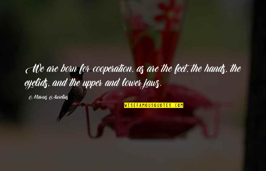 Jaws Quotes By Marcus Aurelius: We are born for cooperation, as are the