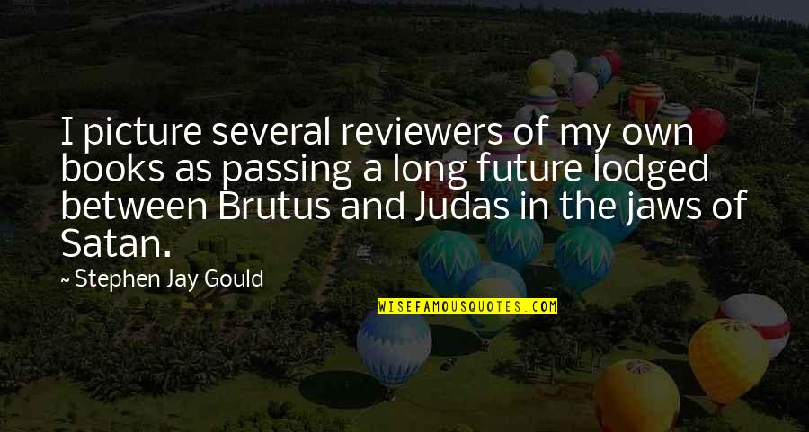 Jaws Quotes By Stephen Jay Gould: I picture several reviewers of my own books