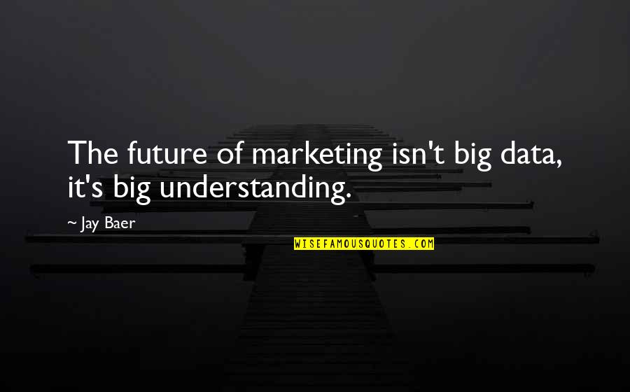 Jay's Quotes By Jay Baer: The future of marketing isn't big data, it's