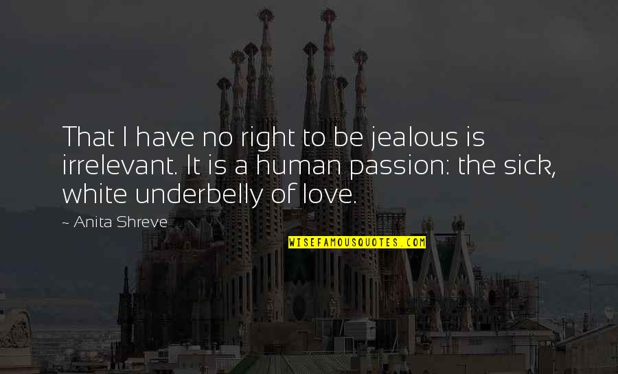 Jealous Love Quotes By Anita Shreve: That I have no right to be jealous
