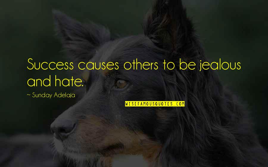 Jealousy Of Others Success Quotes By Sunday Adelaja: Success causes others to be jealous and hate.