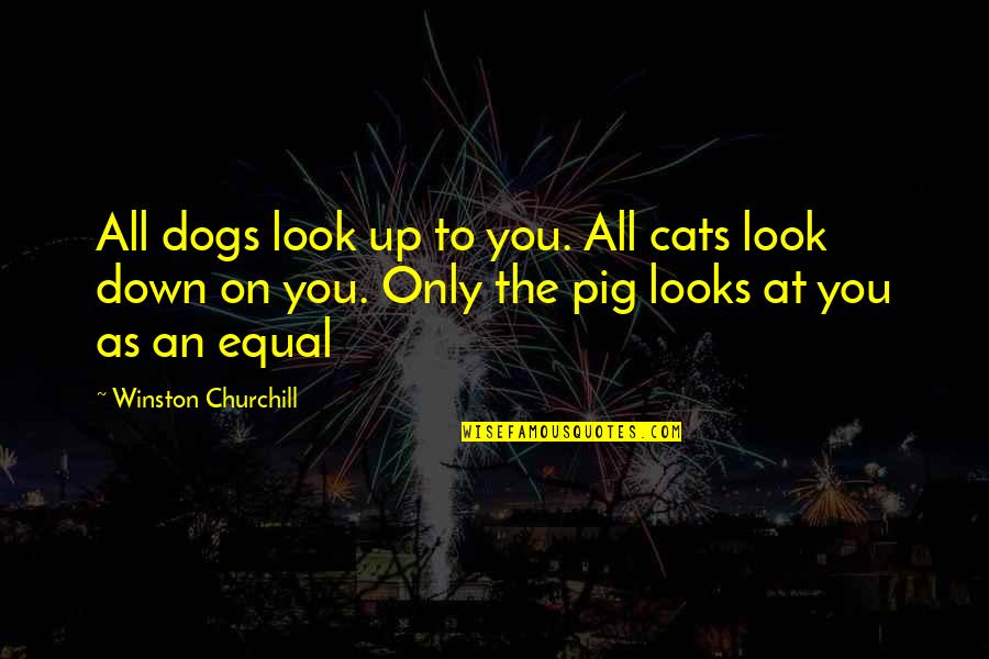 Jean Christophe Quotes By Winston Churchill: All dogs look up to you. All cats