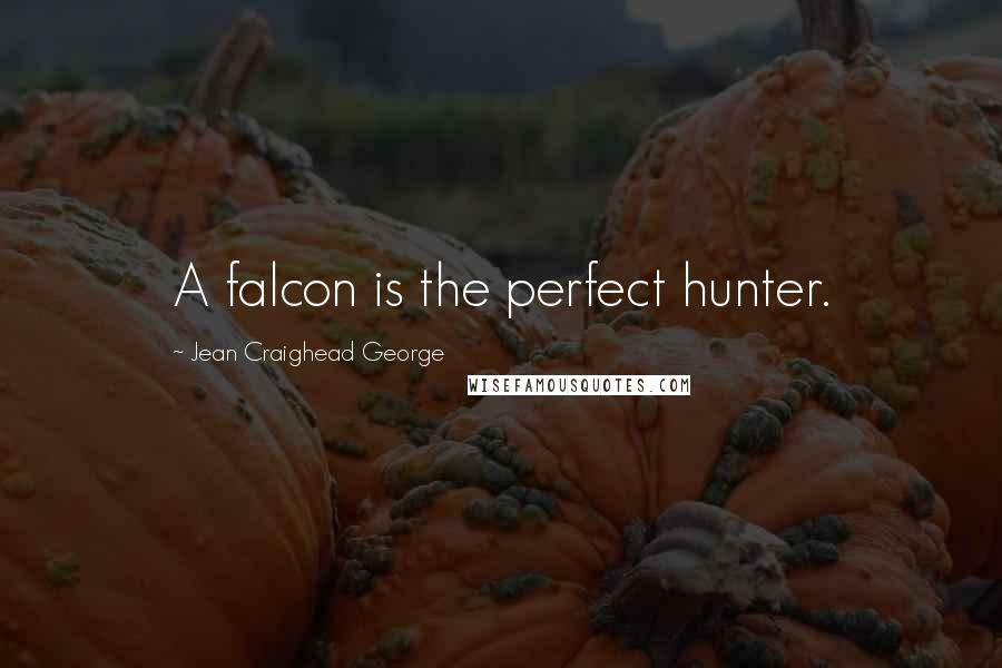 Jean Craighead George quotes: A falcon is the perfect hunter.