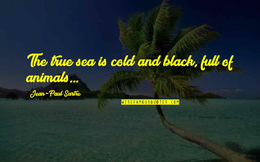 Jean Quotes By Jean-Paul Sartre: The true sea is cold and black, full