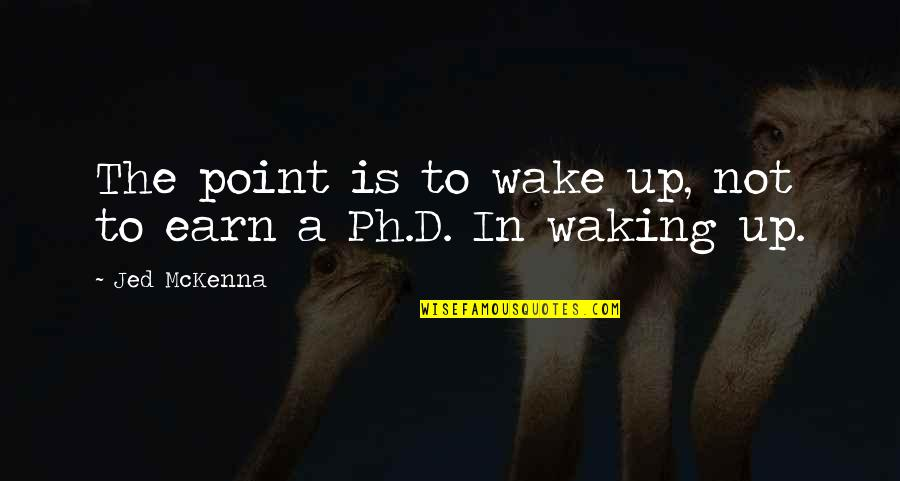 Jed's Quotes By Jed McKenna: The point is to wake up, not to