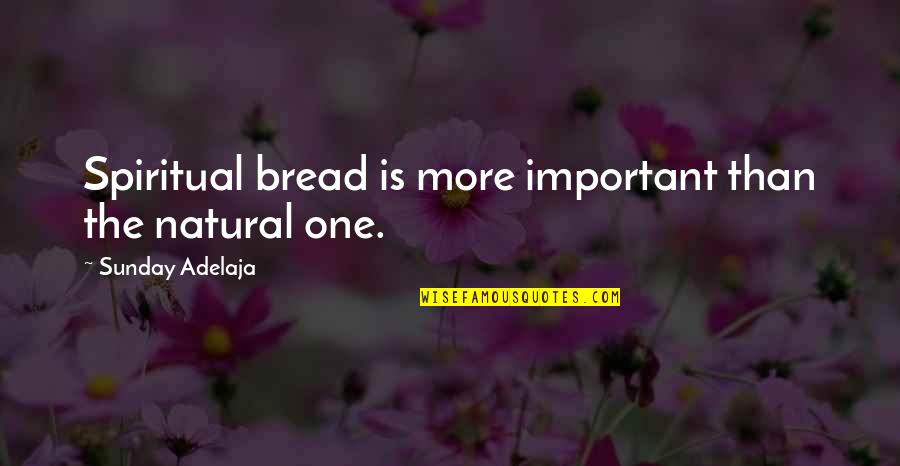 Jef Aerosol Quotes By Sunday Adelaja: Spiritual bread is more important than the natural
