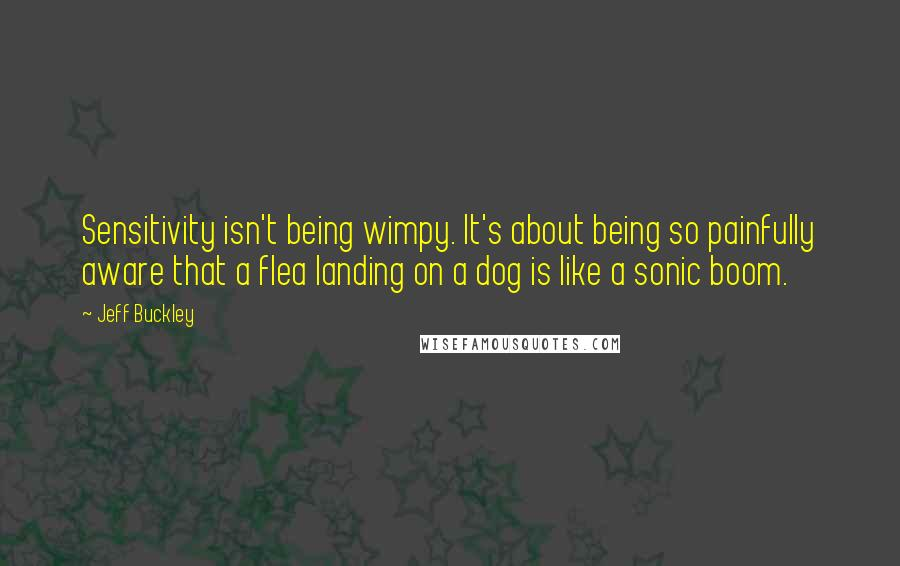 Jeff Buckley quotes: Sensitivity isn't being wimpy. It's about being so painfully aware that a flea landing on a dog is like a sonic boom.