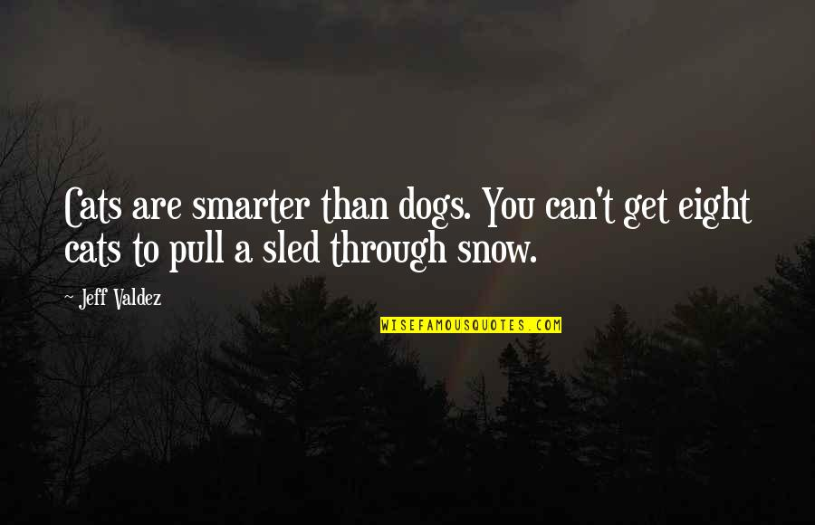 Jeff Quotes By Jeff Valdez: Cats are smarter than dogs. You can't get